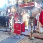 Архијерејска литургија Доњи Петровци